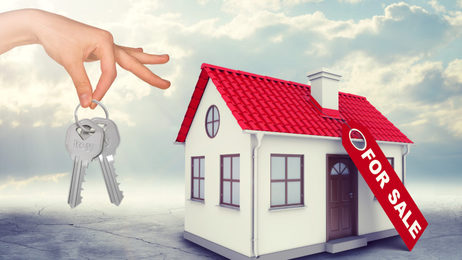 Real estate purchase / sale process